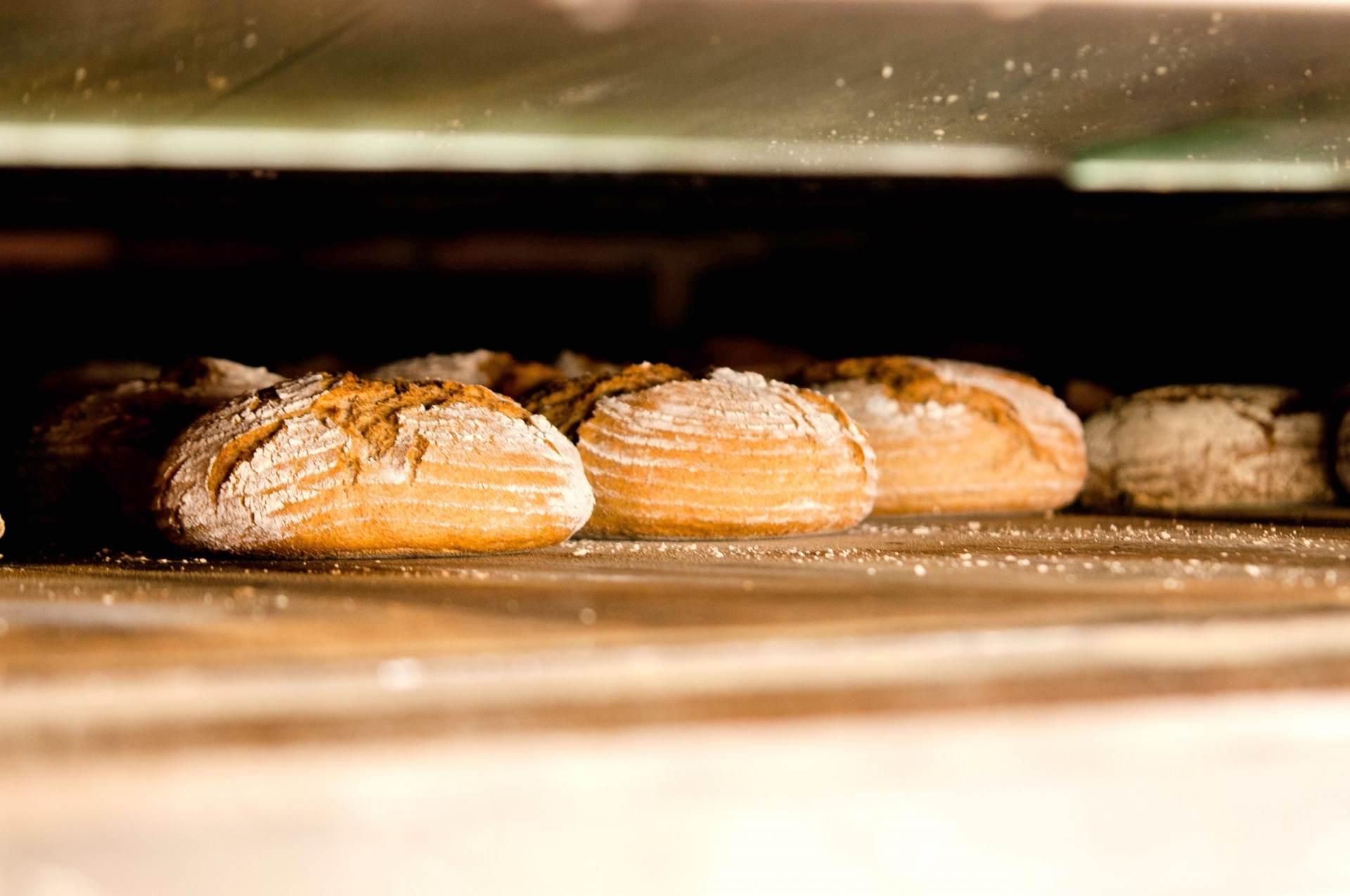 【パン作りのレシピ】基礎から応用までパンのレシピに関する記事一覧